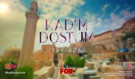 Турецкий сериал: Мой старый друг / Kadim Dostum (2014)