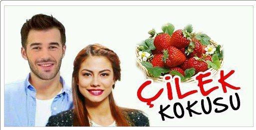 Цвет клубники турецкий сериал
