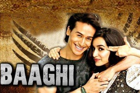 Индийский фильм: Бунтарь / Baaghi (2016)