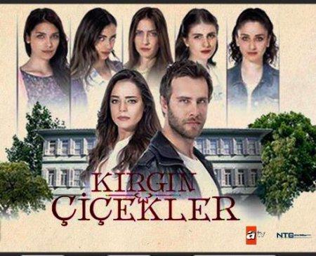 Турецкий сериал: Обиженные цветы / Kırgın Çiçekler (2015)