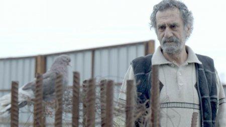 Турецкий фильм: Крылья моего отца / Babamın Kanatları (2016)
