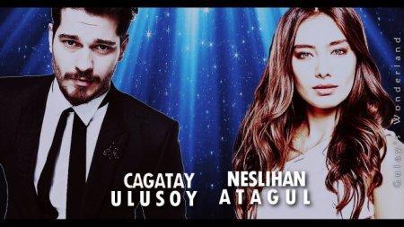Чагатай Улусой и Неслихан Атагюль в одном сериале?