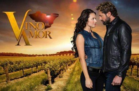 Мексиканский сериал: Вино любви / Vino el amor (2016)