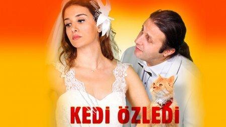 Турецкий фильм: Кошка соскучилась / Kedi Ozledi (2013)