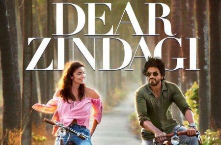 Индийский фильм: Дорогая жизнь / Dear Zindagi (2016)