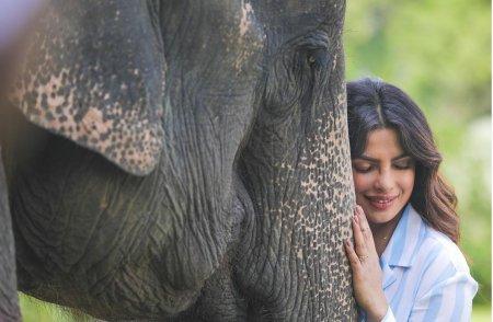 Приянка Чопра: Я гордая индианка