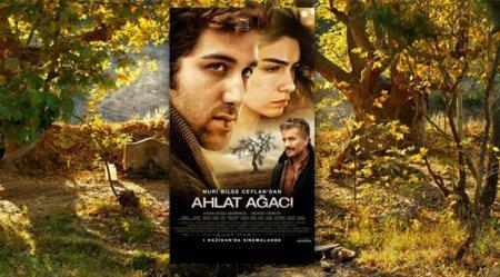 Турецкий фильм: Дикая груша / Ahlat Agaci (2018)