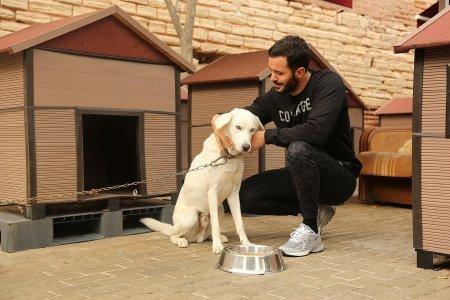 Барыш Ардуч посетил приют для животных