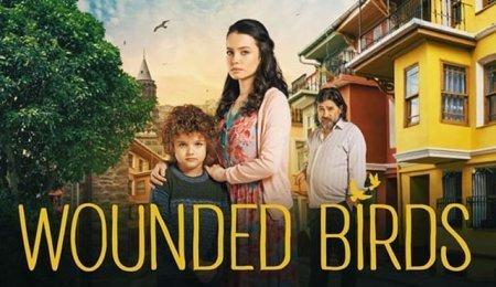 Турецкий сериал: Раненые птицы / Yarali Kuslar (2019)