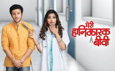Индийский сериал: Моя безумная жена / Meri Hanikarak Biwi (2017)
