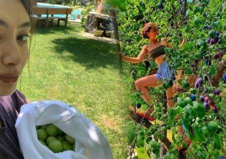 Неслихан Атагюль залезла на дерево