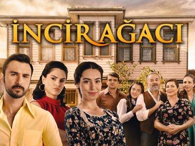 Турецкий сериал: Инжирное дерево / Incir Agaci (2019)