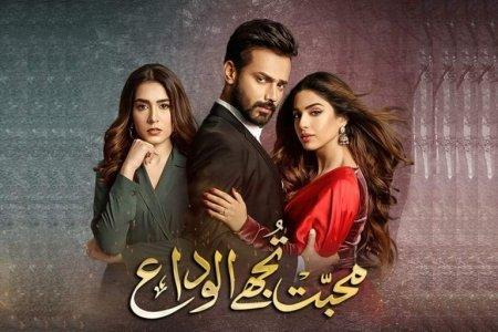 Пакистанский сериал: Прощай, любовь / Mohabbat Tujhe Alvida (2020)