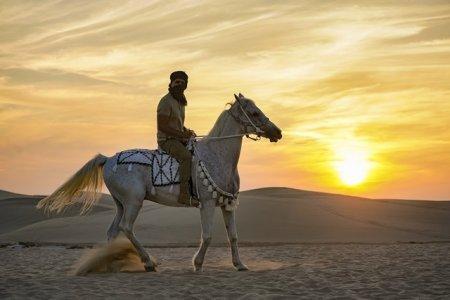 «Я так долго тебя ждал» в Дохе