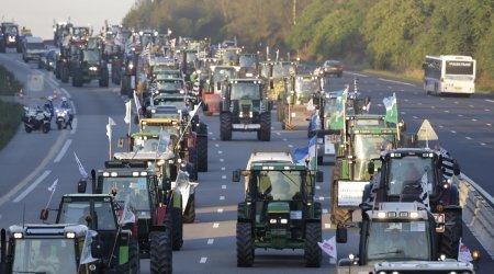 Протесты фермеров в Индии и реакция звёзд