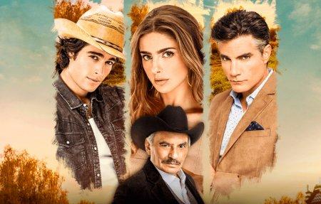 Мексиканский сериал: Хочу все это / Quererlo todo (2020)