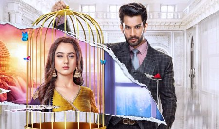 Индийский сериал: Клетка красоты / Pinjara Khubsurti Ka (2020)